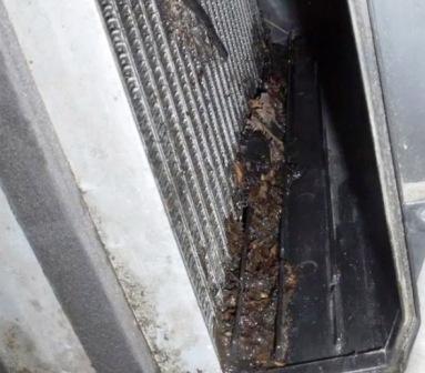 Чистим место под салонный фильтр Saab 9-5