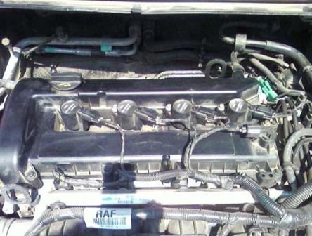 Под крышкой видим катушки зажигания Ford Focus 2